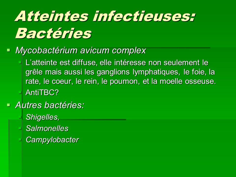 Atteintes infectieuses: Bactéries Mycobactérium avicum complex Mycobactérium avicum complex Latteinte est diffuse, elle intéresse non seulement le grê