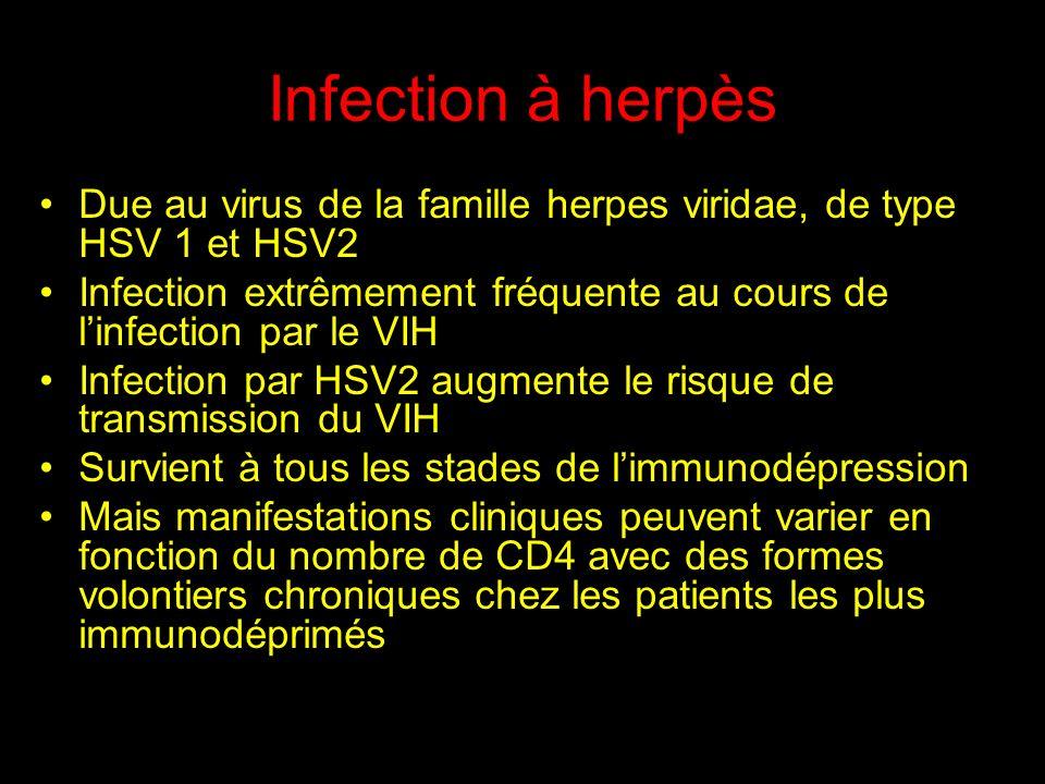 Infection à herpès Due au virus de la famille herpes viridae, de type HSV 1 et HSV2 Infection extrêmement fréquente au cours de linfection par le VIH Infection par HSV2 augmente le risque de transmission du VIH Survient à tous les stades de limmunodépression Mais manifestations cliniques peuvent varier en fonction du nombre de CD4 avec des formes volontiers chroniques chez les patients les plus immunodéprimés
