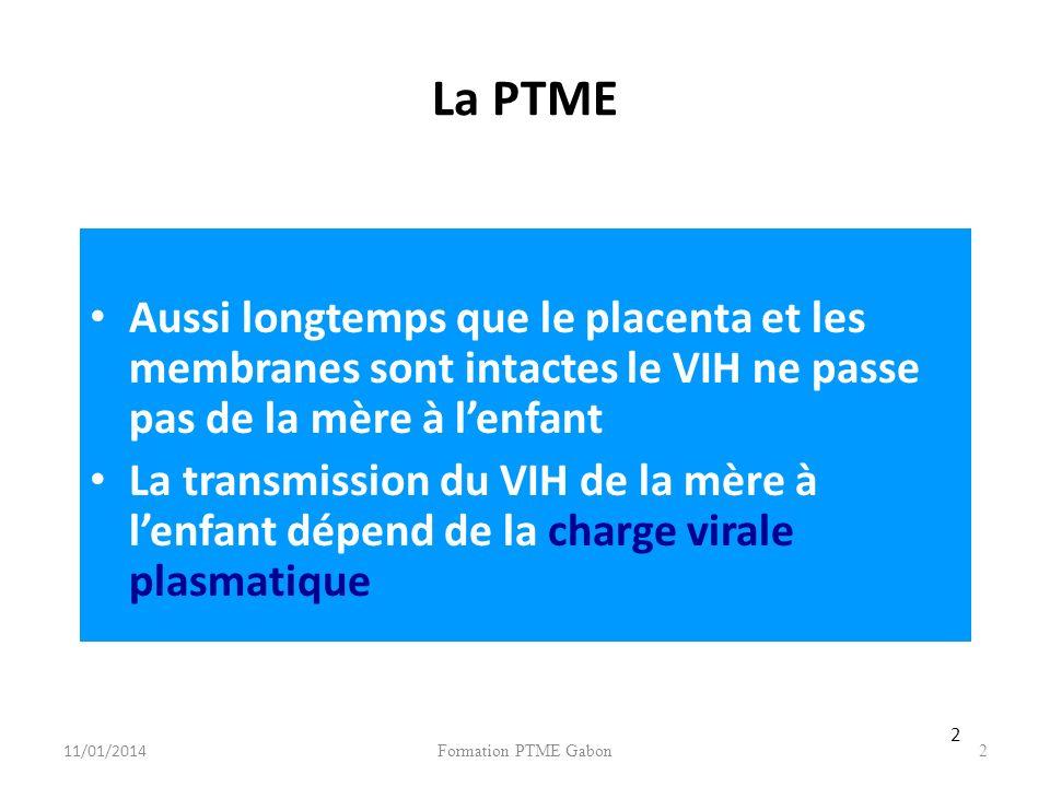 Formation PTME Gabon2 La PTME Aussi longtemps que le placenta et les membranes sont intactes le VIH ne passe pas de la mère à lenfant La transmission du VIH de la mère à lenfant dépend de la charge virale plasmatique 2 11/01/2014