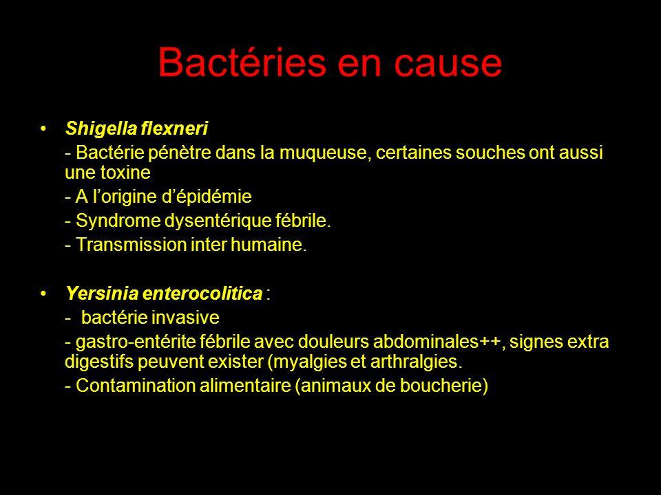 Bactéries en cause Shigella flexneri - Bactérie pénètre dans la muqueuse, certaines souches ont aussi une toxine - A lorigine dépidémie - Syndrome dys