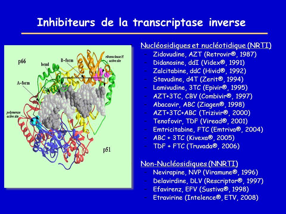 Inhibiteurs de la transcriptase inverse Nucléosidiques et nucléotidique (NRTI) –Zidovudine, AZT (Retrovir®, 1987) –Didanosine, ddI (Videx®, 1991) –Zal