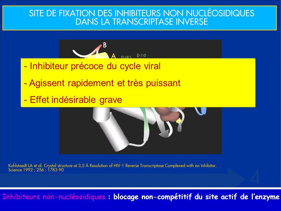 Inhibiteurs non-nucléosidiques : blocage non-compétitif du site actif de lenzyme - Inhibiteur précoce du cycle viral - Agissent rapidement et très pui