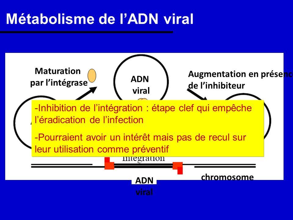 Métabolisme de lADN viral Maturation par lintégrase ADN viral ADN viral ADN viral chromosome ADN viral Blocage par linhibiteur Augmentation en présenc
