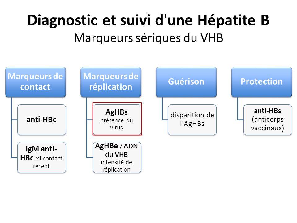 Diagnostic et suivi d'une Hépatite B Marqueurs sériques du VHB Marqueurs de contact anti-HBc IgM anti- HBc :si contact récent Marqueurs de réplication