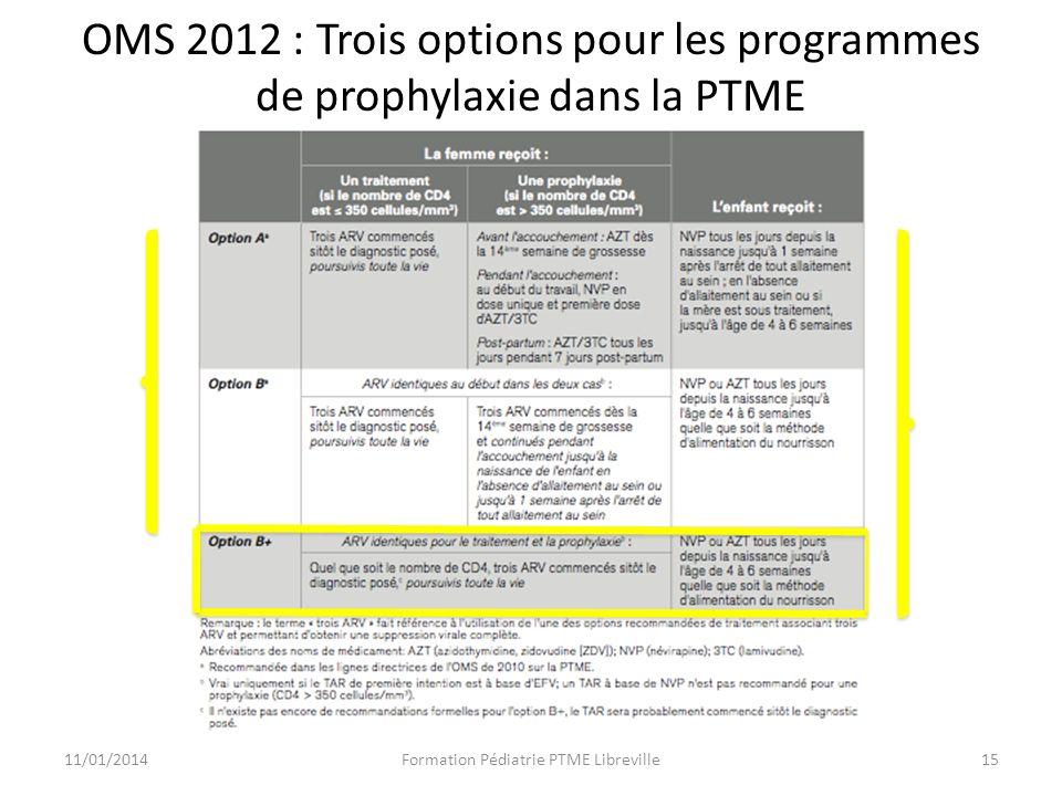 OMS 2012 : Trois options pour les programmes de prophylaxie dans la PTME 11/01/2014Formation Pédiatrie PTME Libreville15 2010 2012