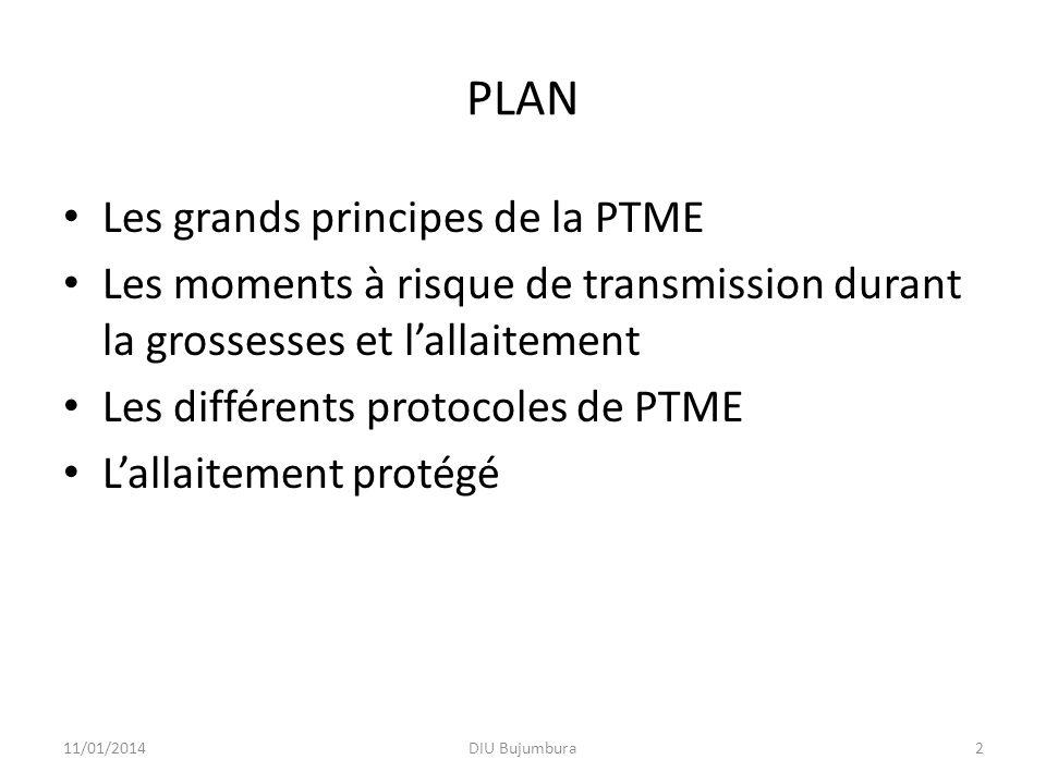 PLAN Les grands principes de la PTME Les moments à risque de transmission durant la grossesses et lallaitement Les différents protocoles de PTME Lalla