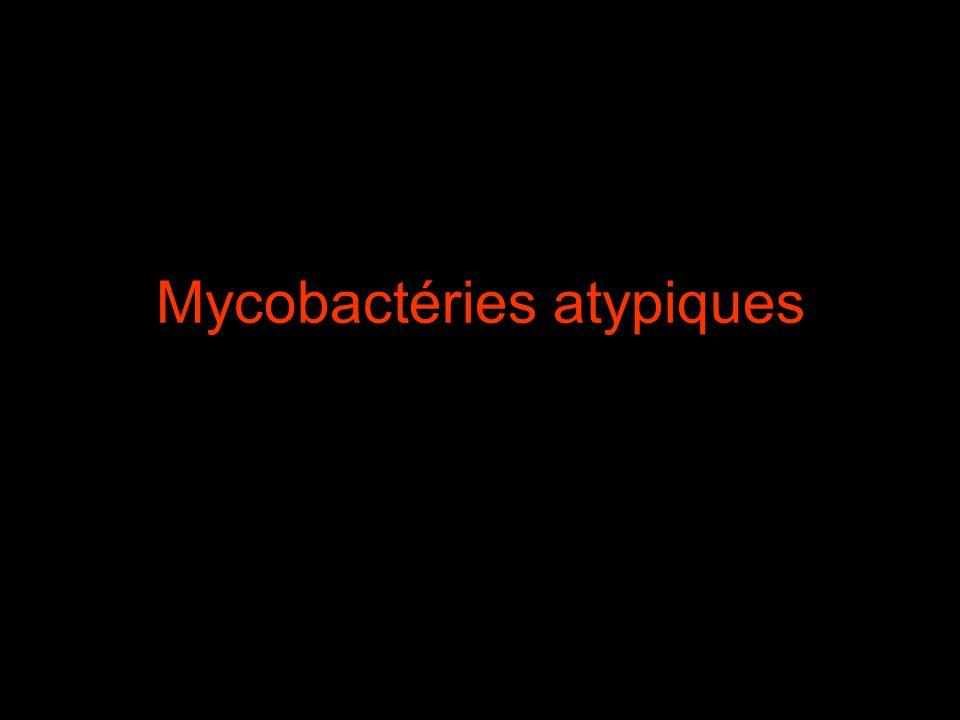 Surtout à Mycobactérium avium complex (MAC) ou Mycobacterium avium intracellulare Contamination par voie digestive +++ et aérienne Maladie se déclare chez les patients très immunodéprimés (CD4< 100, voire < à 50/mm 3 )