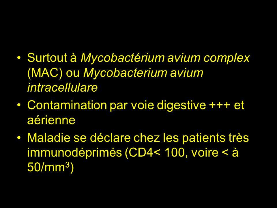 Surtout à Mycobactérium avium complex (MAC) ou Mycobacterium avium intracellulare Contamination par voie digestive +++ et aérienne Maladie se déclare
