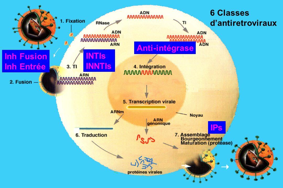 INTIs INNTIs IPs Inh Fusion Inh Entrée 6 Classes dantiretroviraux Anti-intégrase