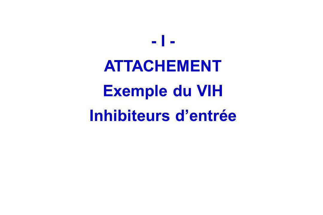 - I - ATTACHEMENT Exemple du VIH Inhibiteurs dentrée
