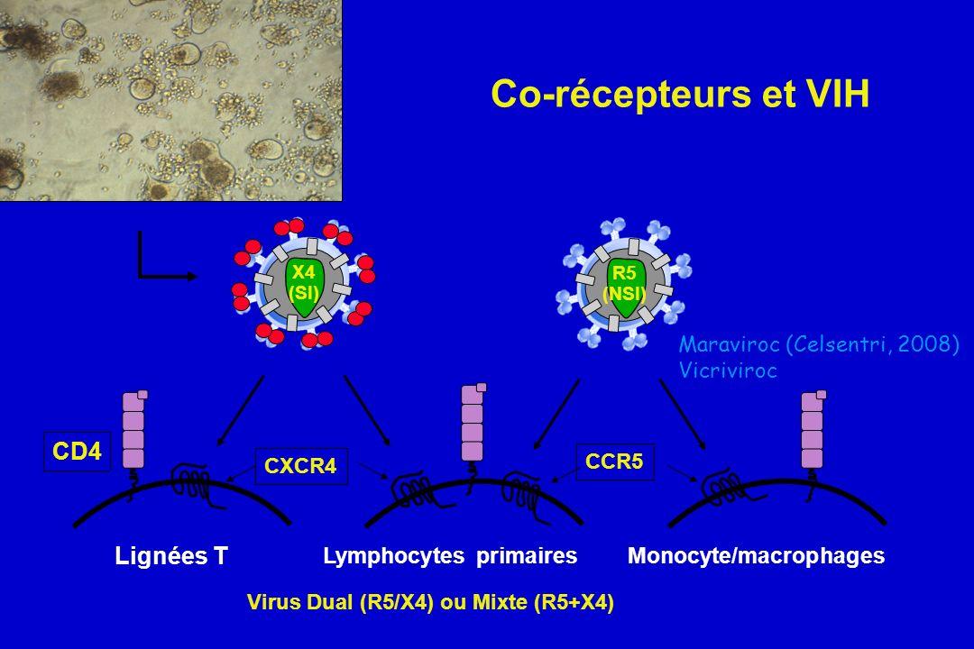 Co-récepteurs et VIH CXCR4 CCR5 CD4 Lignées T Lymphocytes primairesMonocyte/macrophages R5 (NSI) X4 (SI) Maraviroc (Celsentri, 2008) Vicriviroc Virus