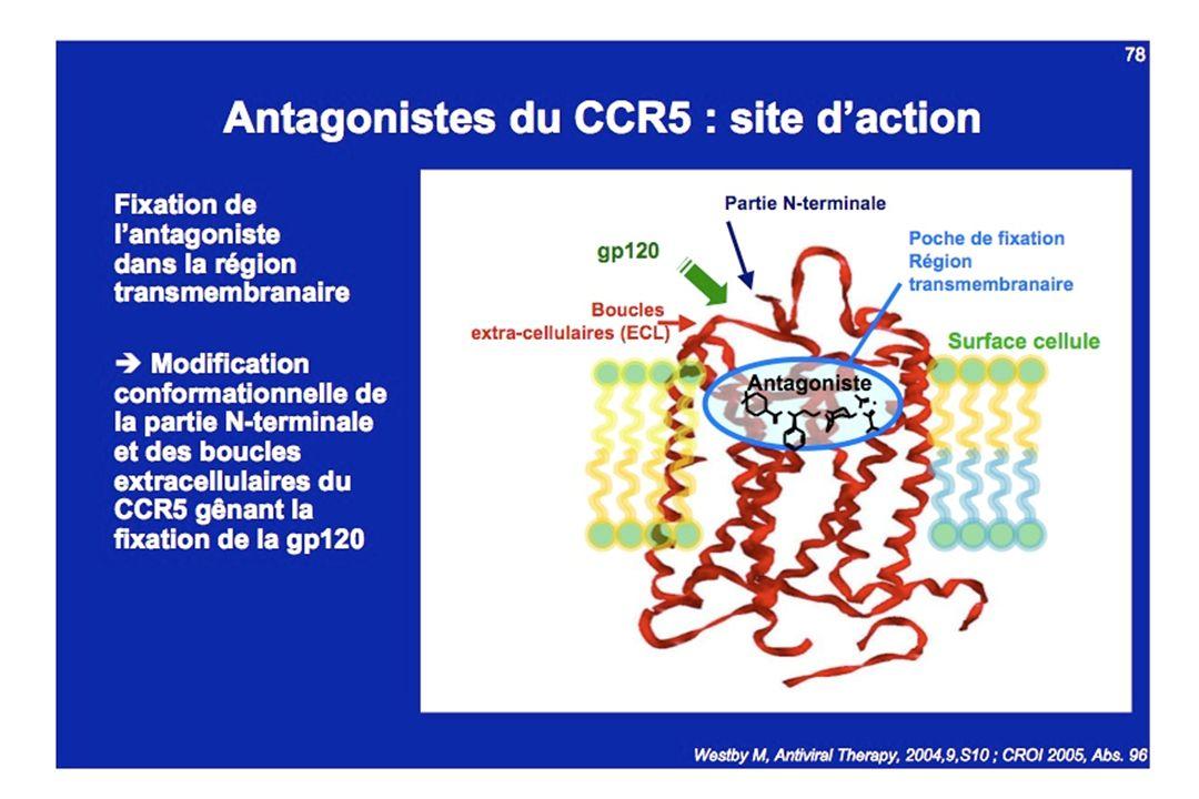 III Inhibiteurs de protéase
