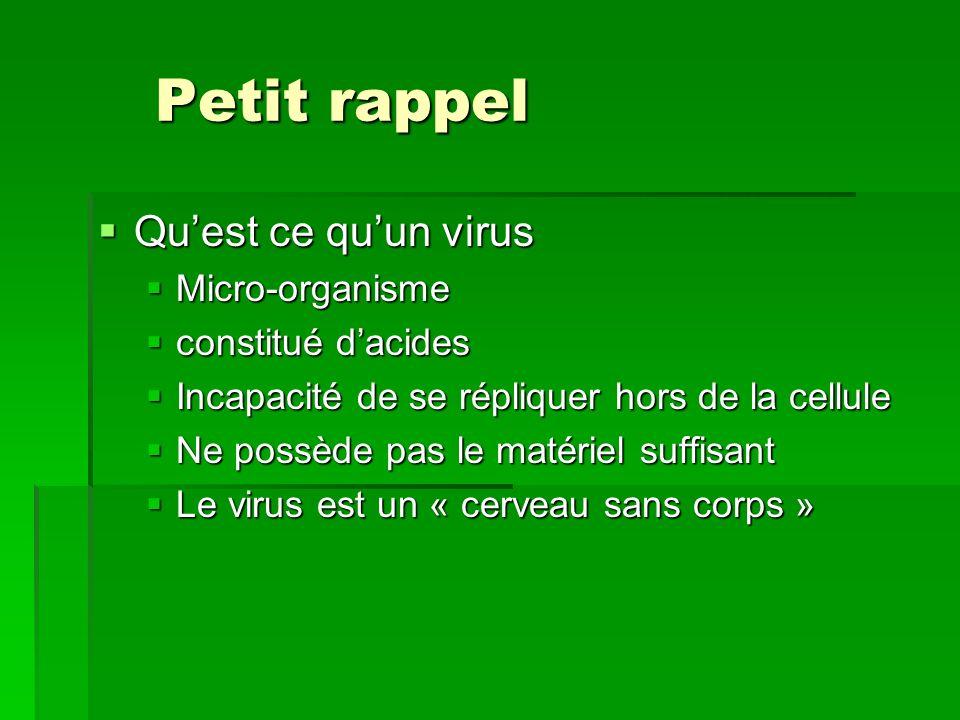 Petit rappel Petit rappel Quest ce quun virus Quest ce quun virus Micro-organisme Micro-organisme constitué dacides constitué dacides Incapacité de se