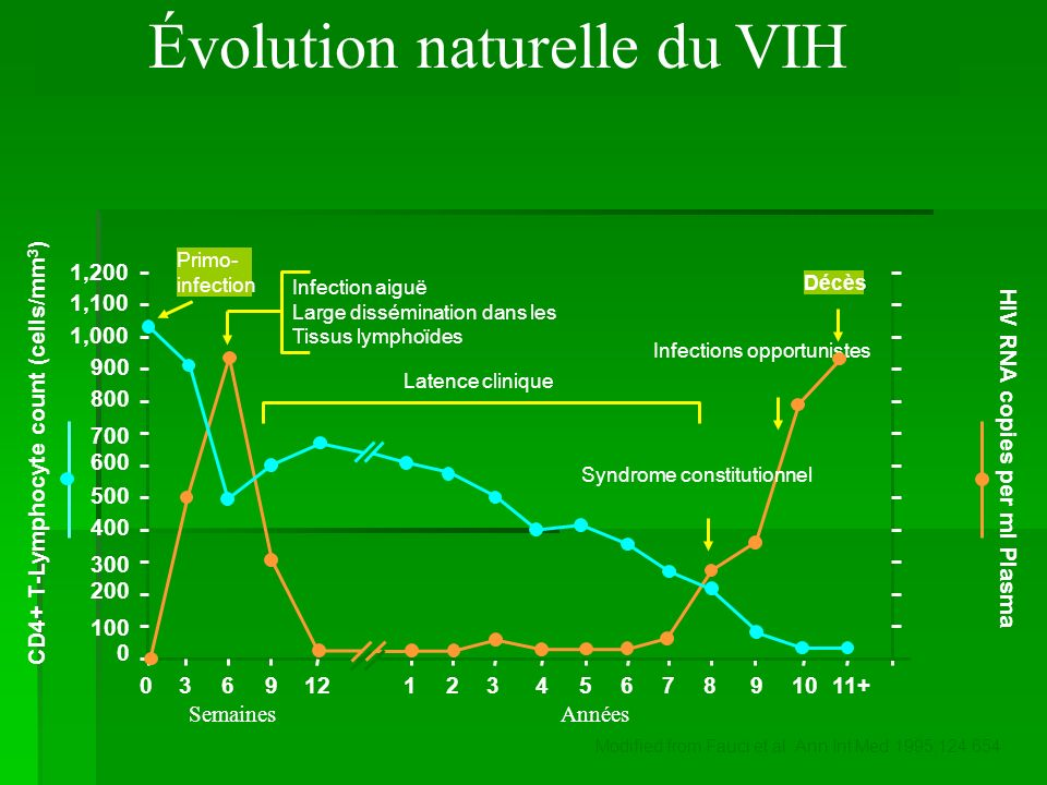 Évolution naturelle du VIH 1,200 CD4+ T-Lymphocyte count (cells/mm 3 ) 1,100 1,000 900 800 700 600 500 400 300 200 100 0 11+1098765432112963 SemainesA