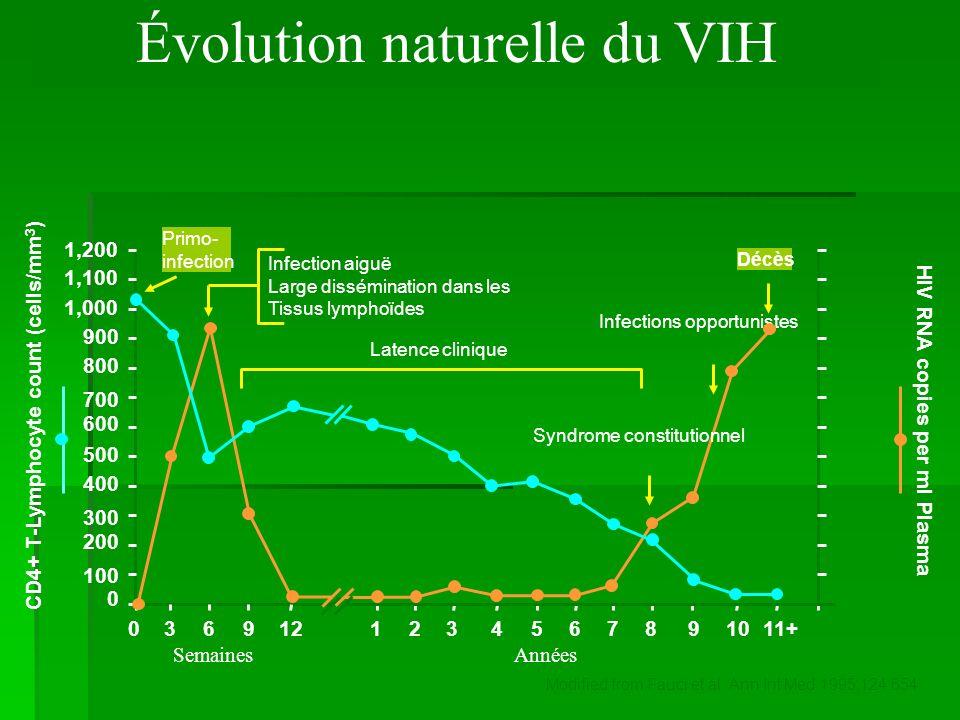 Évolution naturelle de linfection Primo-infection T4 Temps Contamination 1 à 6 mois 3 à 15 ans 200 1000 PNEUMOCYSTOSE Candidoses buccales, leucoplasie de la langue… CANDIDOSE ŒSOPHAGIENNE TOXOPLASMOSE CÉRÉBRALE CYTOMÉGALOVIRUS MYCOBACTÉRIES Charge virale 11 Asymptomatique