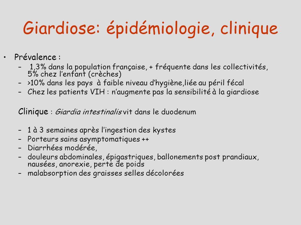 Giardiose: épidémiologie, clinique Prévalence : – 1,3% dans la population française, + fréquente dans les collectivités, 5% chez lenfant (crèches) –>1