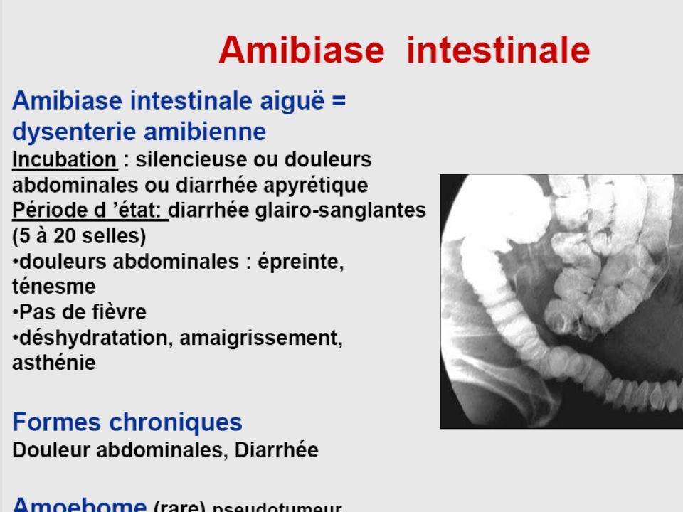 Cyclosporose : clinique Diarrhées aqueuses+++ Nausées, anoréxie Amaigrissement Chez les patients immunodéprimés, la diarrhée est + sévère