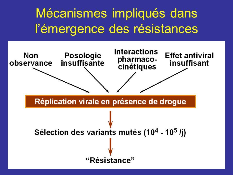 Mécanismes impliqués dans lémergence des résistances