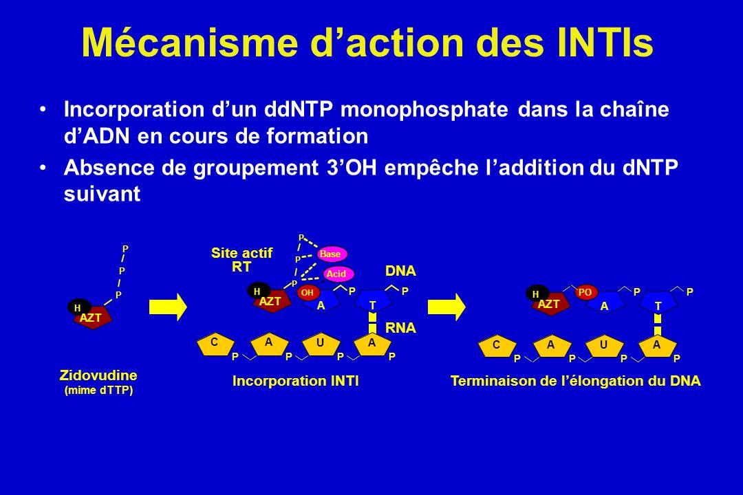 Mécanisme daction des INTIs Incorporation dun ddNTP monophosphate dans la chaîne dADN en cours de formation Absence de groupement 3OH empêche ladditio