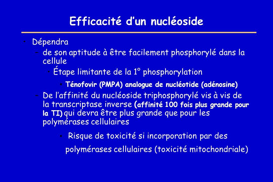 Efficacité dun nucléoside Dépendra –de son aptitude à être facilement phosphorylé dans la cellule Étape limitante de la 1° phosphorylation Ténofovir (