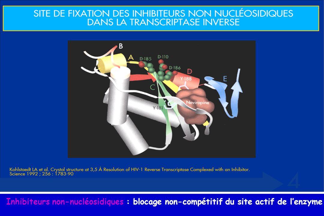 Inhibiteurs non-nucléosidiques : blocage non-compétitif du site actif de lenzyme