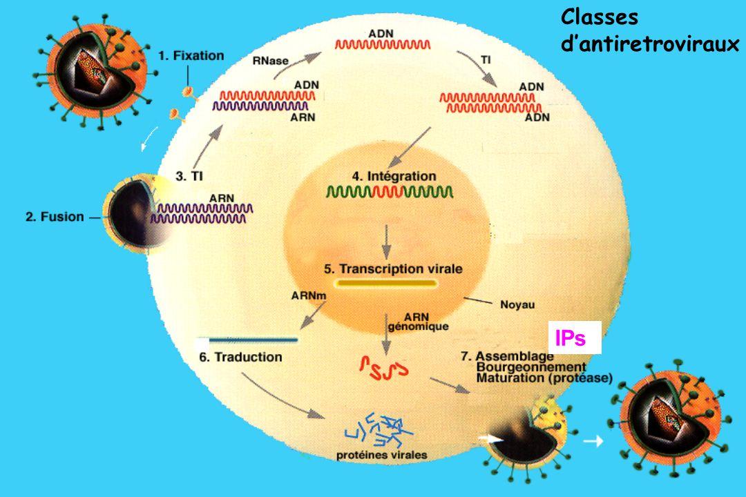 IPs Classes dantiretroviraux