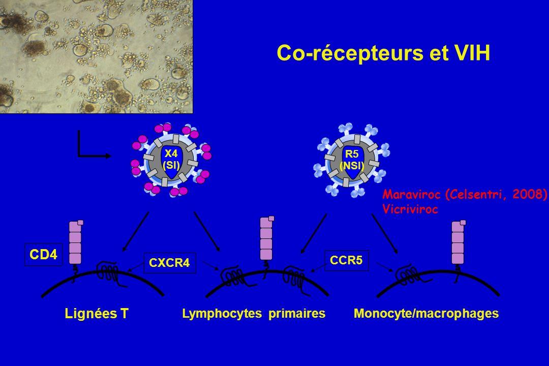 Co-récepteurs et VIH CXCR4 CCR5 CD4 Lignées T Lymphocytes primairesMonocyte/macrophages R5 (NSI) X4 (SI) Maraviroc (Celsentri, 2008) Vicriviroc