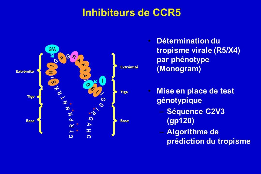 Inhibiteurs de CCR5 Détermination du tropisme virale (R5/X4) par phénotype (Monogram) Mise en place de test génotypique –Séquence C2V3 (gp120) –Algori
