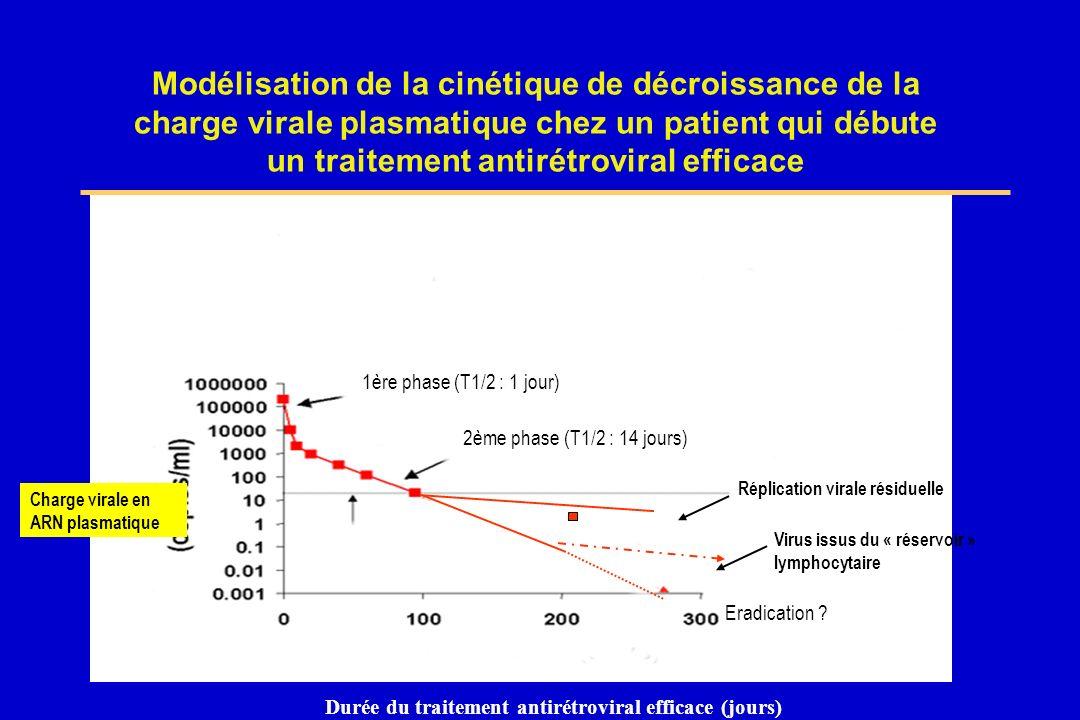 Modélisation de la cinétique de décroissance de la charge virale plasmatique chez un patient qui débute un traitement antirétroviral efficace Durée du
