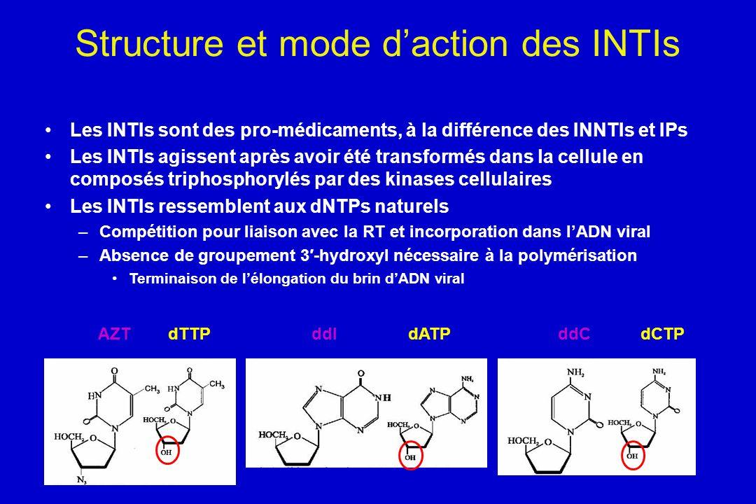 Structure et mode daction des INTIs Les INTIs sont des pro-médicaments, à la différence des INNTIs et IPs Les INTIs agissent après avoir été transform