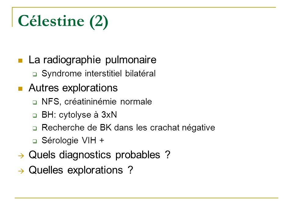 Célestine (2) La radiographie pulmonaire Syndrome interstitiel bilatéral Autres explorations NFS, créatininémie normale BH: cytolyse à 3xN Recherche d