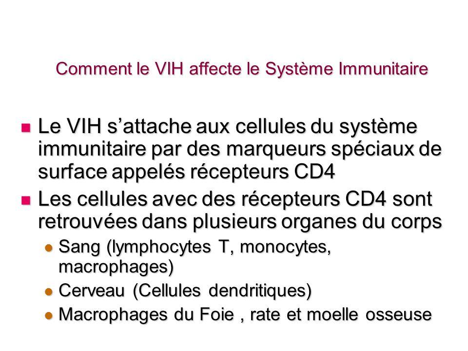 Effets Du VIH Sur Le Système Immunitaire Le cachet du VIH/SIDA est limmunodéficience profonde résultant de la déplétion des lymphocytes T CD4+ Le cachet du VIH/SIDA est limmunodéficience profonde résultant de la déplétion des lymphocytes T CD4+ Le dysfonctionnement des cellules T CD4+ est bidimensionnelle Le dysfonctionnement des cellules T CD4+ est bidimensionnelle Réduction de leur nombre Réduction de leur nombre Détérioration de leurs fonctions Détérioration de leurs fonctions