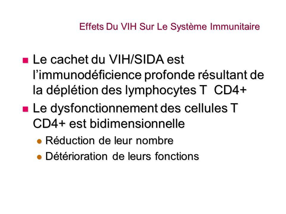 Effets Du VIH Sur Le Système Immunitaire La réduction du nombre des cellules CD4 et la détérioration de leur fonctionnement réduisent la capacité du corps à combattre différentes maladies.