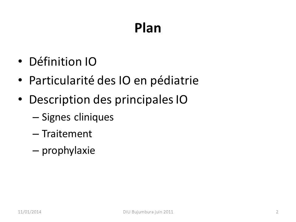 Plan Définition IO Particularité des IO en pédiatrie Description des principales IO – Signes cliniques – Traitement – prophylaxie 11/01/2014DIU Bujumb