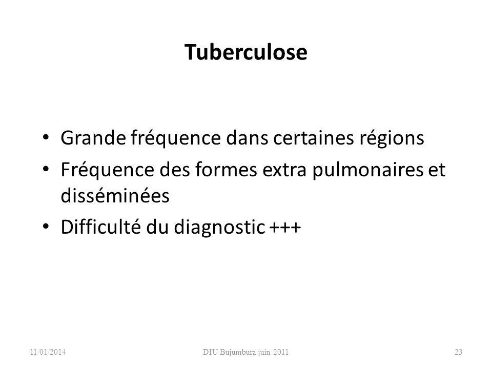 Tuberculose Grande fréquence dans certaines régions Fréquence des formes extra pulmonaires et disséminées Difficulté du diagnostic +++ 11/01/201423