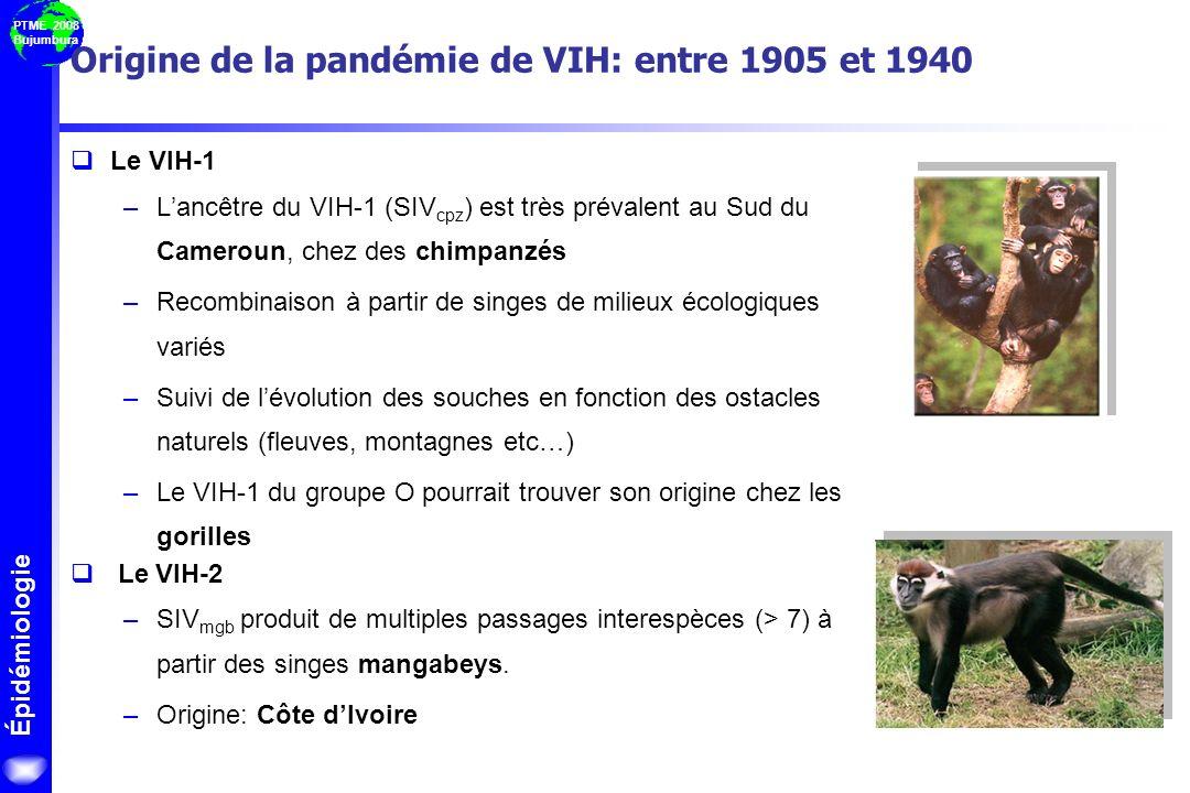 PTME 2008 Bujumbura Origine de la pandémie de VIH: entre 1905 et 1940 Le VIH-1 –Lancêtre du VIH-1 (SIV cpz ) est très prévalent au Sud du Cameroun, ch