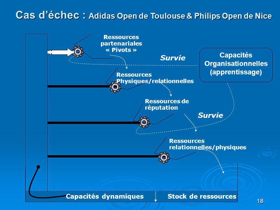 18 Capacités Organisationnelles (apprentissage) Ressources partenariales « Pivots » Ressources Physiques/relationnelles Ressources de réputation Resso