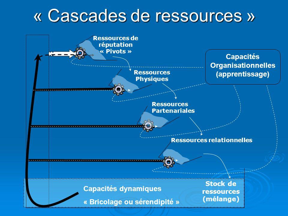 « Cascades de ressources » Stock de ressources (mélange) Ressources de réputation « Pivots » Ressources Physiques Ressources Partenariales Ressources