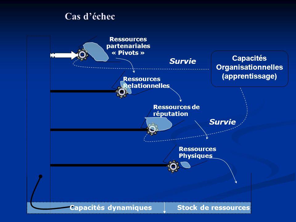 Capacités Organisationnelles (apprentissage) Ressources partenariales « Pivots » Ressources Relationnelles Ressources de réputation Ressources Physiqu
