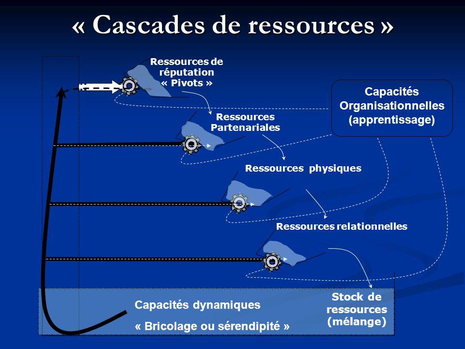 « Cascades de ressources » Stock de ressources (mélange) Ressources de réputation « Pivots » Ressources Partenariales Ressources physiques Ressources