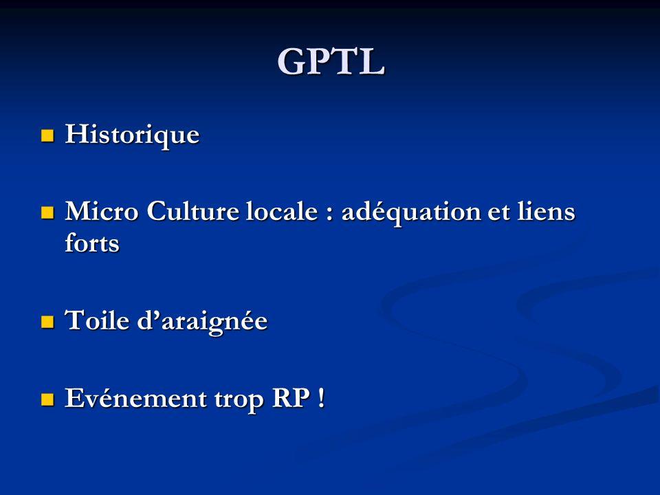 GPTL Historique Historique Micro Culture locale : adéquation et liens forts Micro Culture locale : adéquation et liens forts Toile daraignée Toile dar