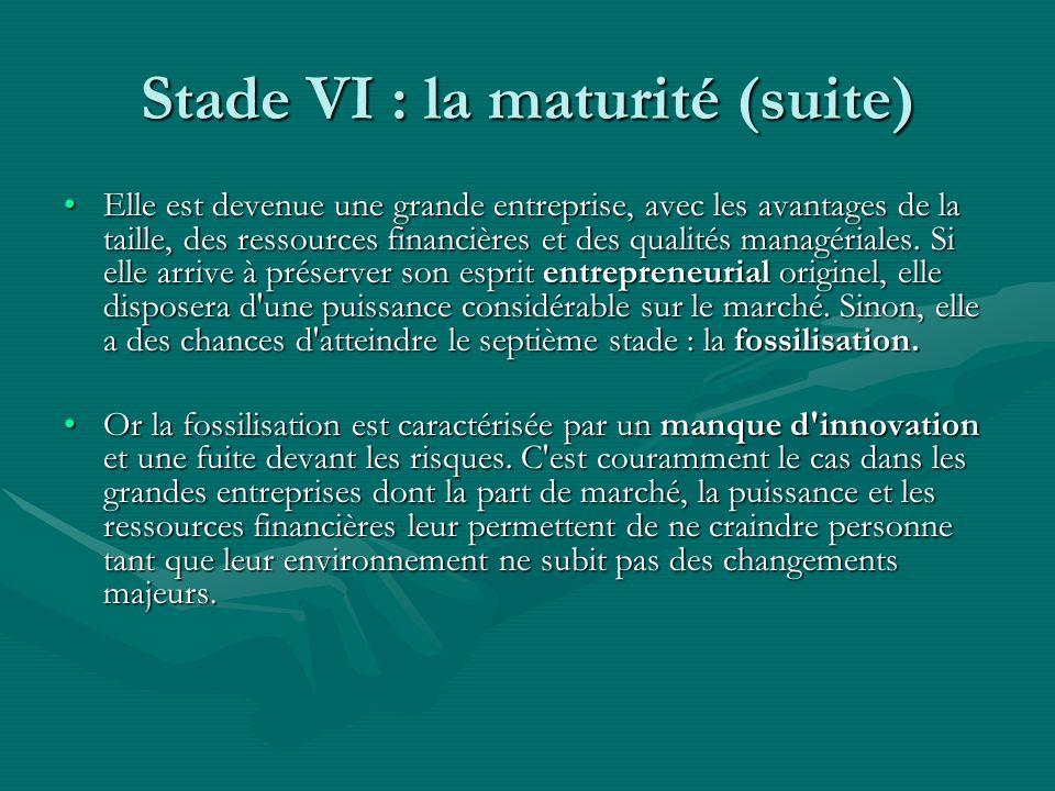 Stade VI : la maturité (suite) Elle est devenue une grande entreprise, avec les avantages de la taille, des ressources financières et des qualités managériales.