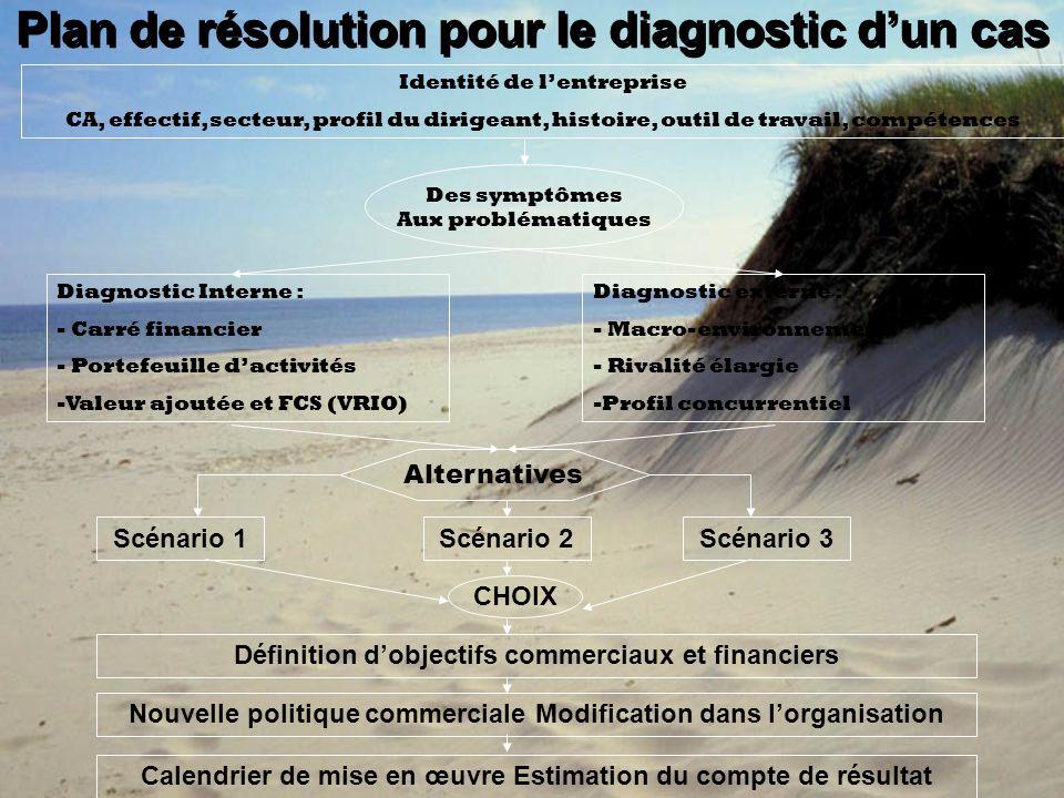 Plan de résolution pour le diagnostic dun cas Identité de lentreprise CA, effectif, secteur, profil du dirigeant, histoire, outil de travail, compéten