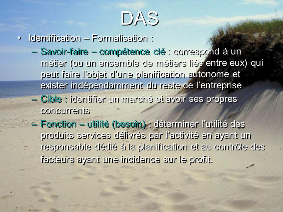 DAS Identification – Formalisation : –Savoir-faire – compétence clé : correspond à un métier (ou un ensemble de métiers liés entre eux) qui peut faire