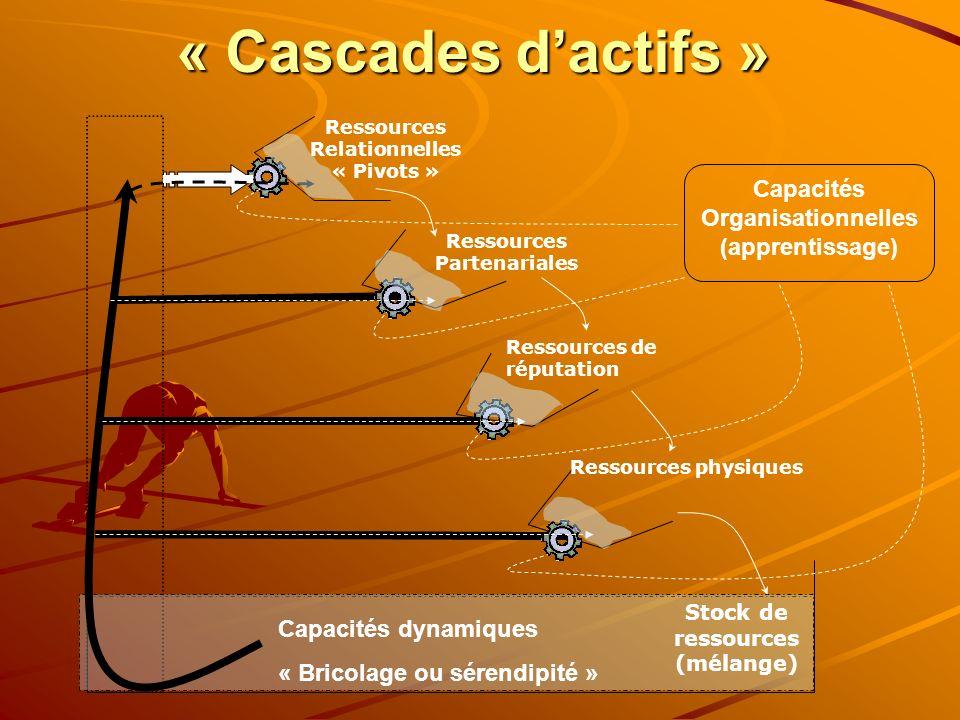 « Cascades dactifs » Stock de ressources (mélange) Ressources Relationnelles « Pivots » Ressources Partenariales Ressources de réputation Ressources p