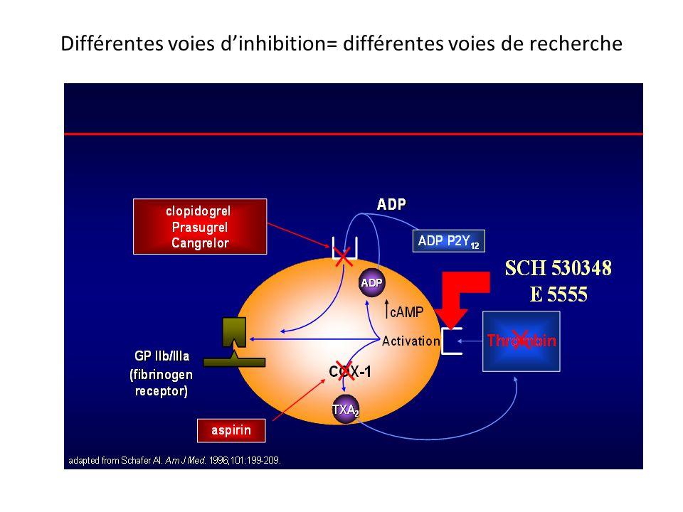 Différentes voies dinhibition= différentes voies de recherche