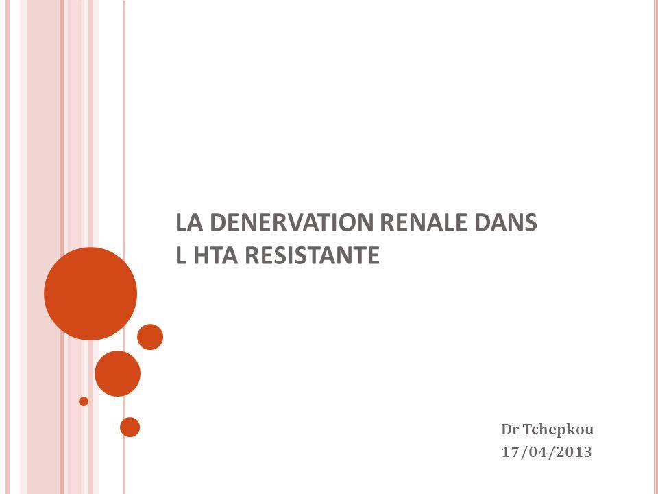 LA DENERVATION RENALE DANS L HTA RESISTANTE Dr Tchepkou 17/04/2013