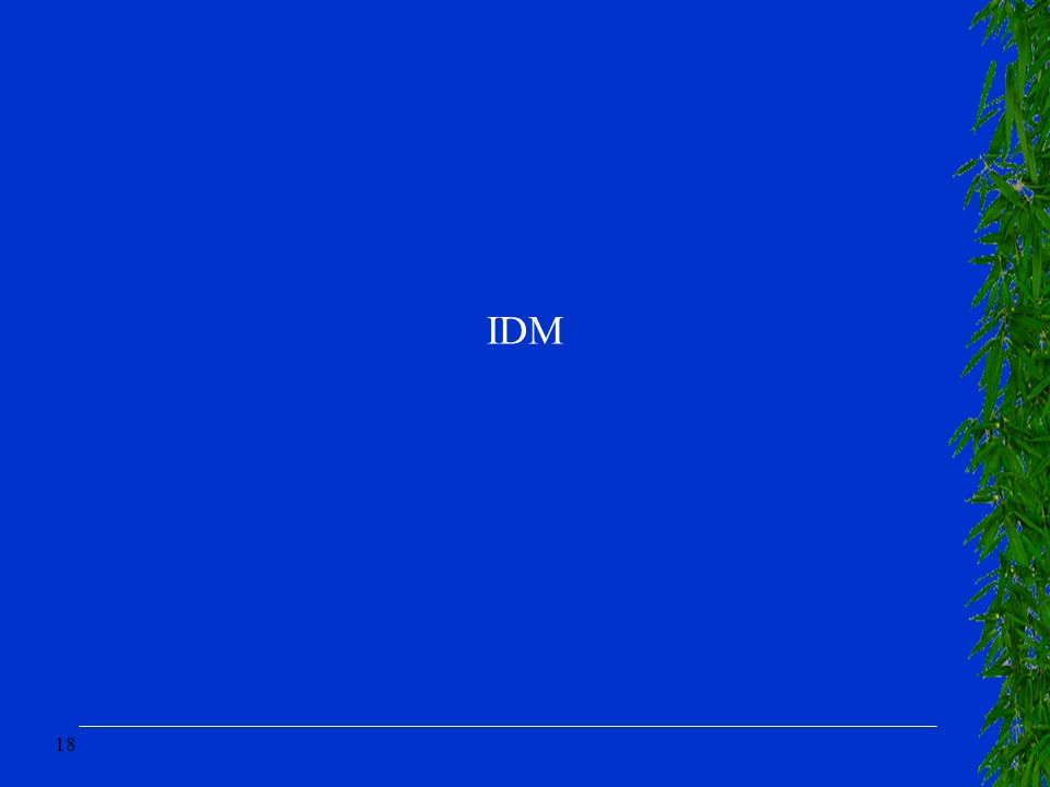 18 IDM