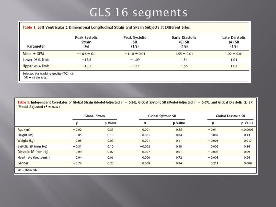 GLS 16 segments