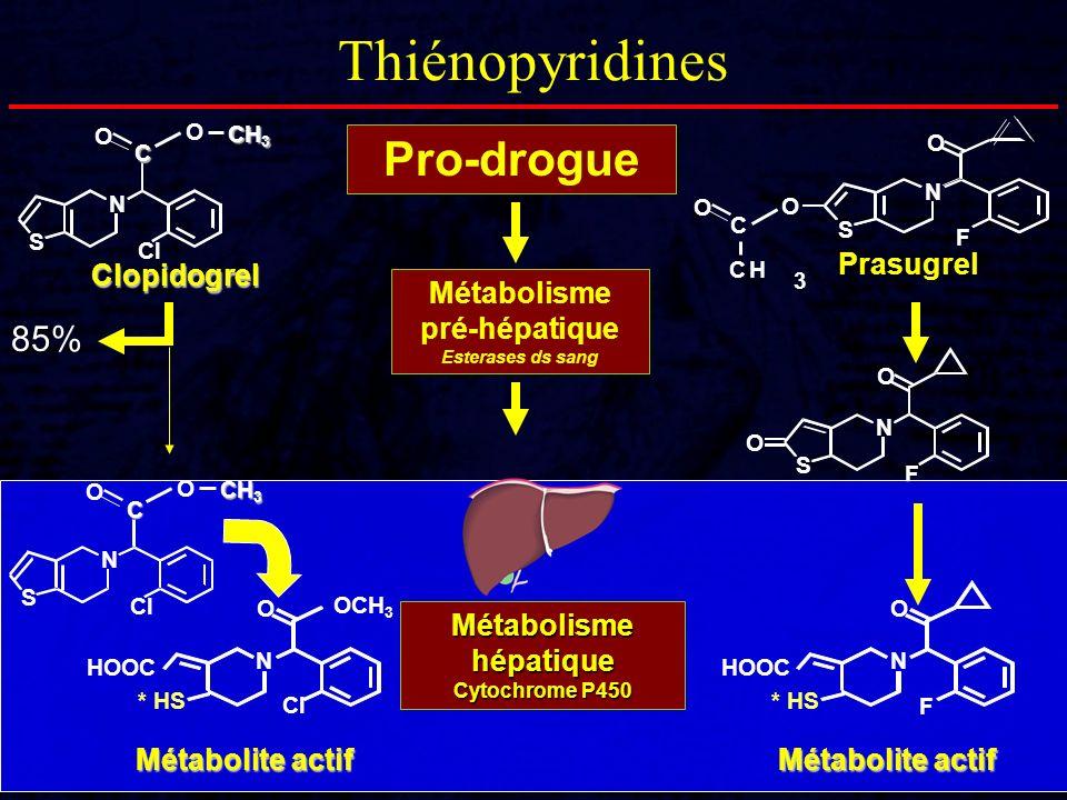 Pro-drogue Métabolisme pré-hépatique Esterases ds sang N S O Cl O CH 3 C O Prasugrel O N S CH 3 C O F 85% Clopidogrel N S O F O N S O Cl O CH 3 C HOOC